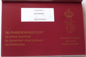 Nouveau Passport Hollandais
